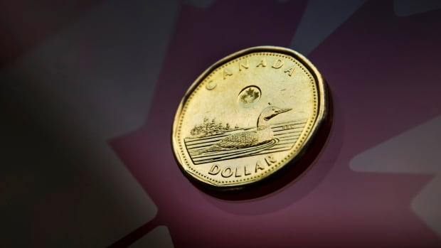 The Canadian dollar was rallying on Wednesday in lockstep with a small rebound in the price of oil.