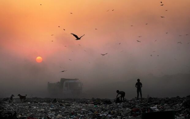 Delhi India Air Pollution