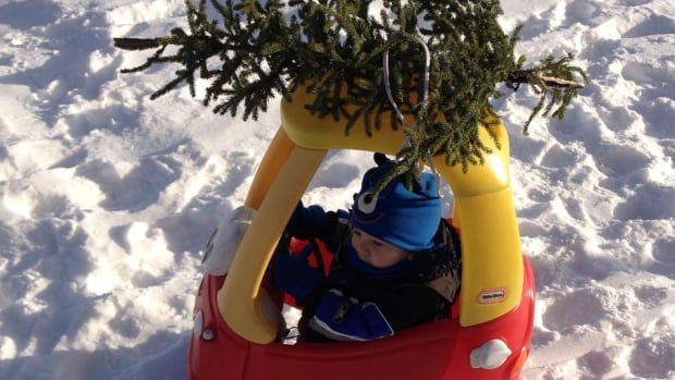 Little Anton gets his Christmas tree in Happy Valley-Goose Bay. There are some simple safety tips for seasonal decorating and celebrating that can keep the holidays a safe and happy time.