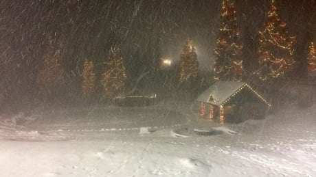 Grouse Mountain closes due to high winds