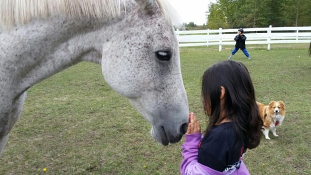 Equine assisted therapy helps children re-establish connections and trust again.