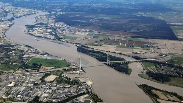 This rendering shows what the new bridge across the Fraser River could look like.