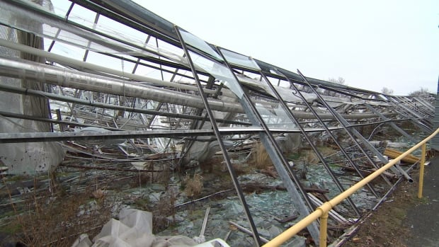 Avon Valley Floral wasn't able to finish cleaning up all the debris from last winter's storm this year, but say they were able to meet customers' demands.