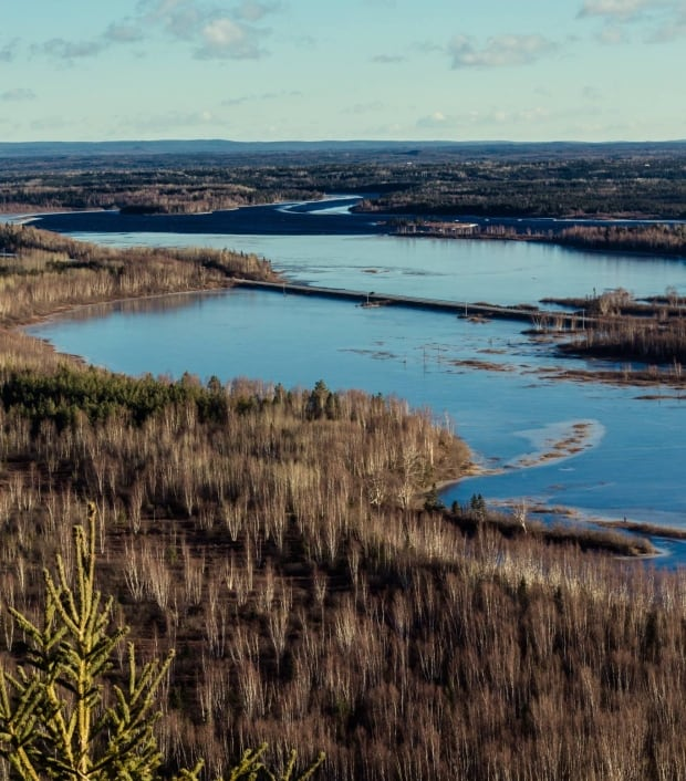 Exploits River atop Red Cliff Janice Rowsell