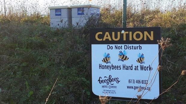 Two sizable honeybee hives, shown in a handout photo, holding some 30,000 bees, were stolen from a field in west Ottawa.