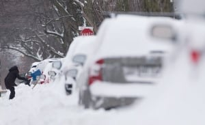 Winter Storm Clean Up 20151230 TOPIX