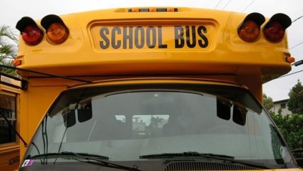 The 19 school buses cost just over $2 million.