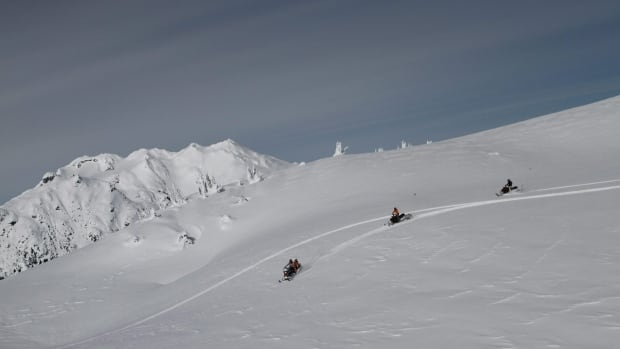 Snowmobile tours are popular in B.C.'s mountains and backcountry. A 65-year-old Australian man died on a B.C. tour (not pictured) when his snowmobile hit a tree.