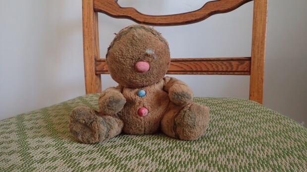 dry teddy bear