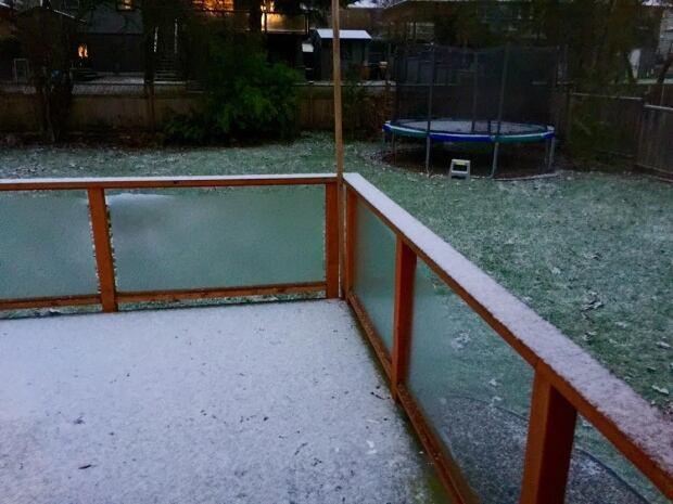 dollarton snow