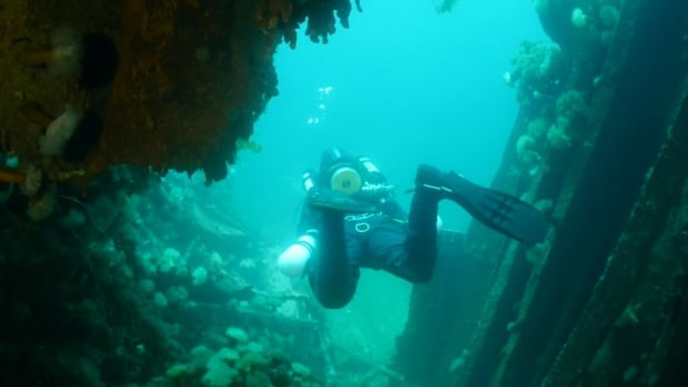A new dive adventure will allow people to explore the submerged tunnel two of the Bell Island mine.