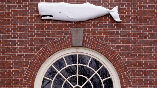 A whale is displayed outside the New Bedford Whaling Museum, which will hold its 20th annual nonstop reading of Herman Melville's classic novel Moby-Dick beginning Saturday.