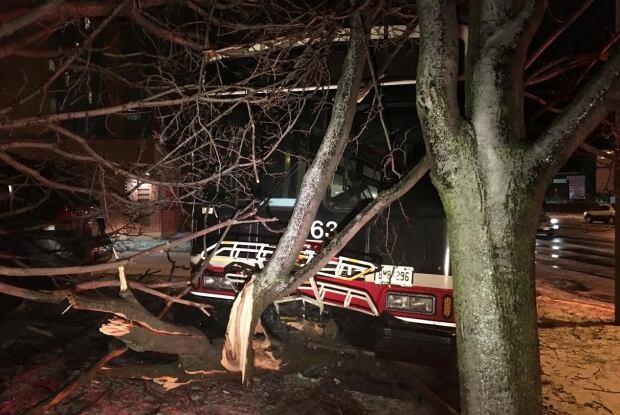 TTC bus crash into tree winter storm