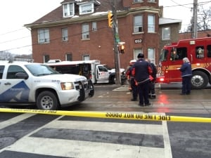 wheel-trans bus hits man and dogs in beaches