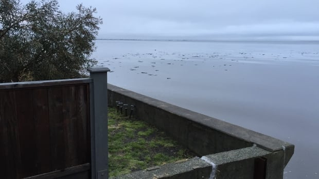The tides peaked Wednesday morning near Beach Grove Road, but no damage was reported.