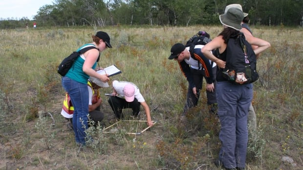 Once certified as a Saskatchewan master naturalist, volunteers will be trained to help survey wild plants and animals.