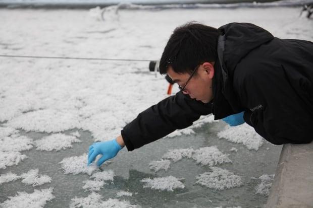 Sea-ice experimental research facility