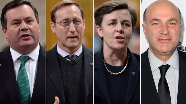 The Conservative Party has set May 27, 2017, as the date it will choose its next leader. Some of the names being mentioned as potential contenders include, from left, Calgary MP Jason Kenney, former justice minister Peter MacKay, Ontario MP Kellie Leitch and celebrity businessman Kevin O'Leary.