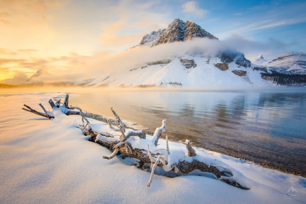 Bow Lake Alberta by Callum Snape