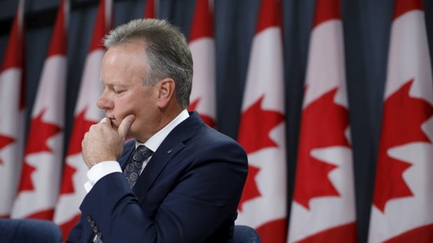 Bank of Canada Governor Stephen Poloz twice cut the central bank's benchmark interest rate last year in an attempt to stimulate the economy.
