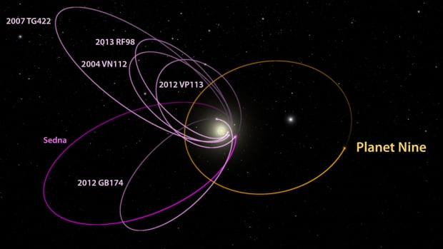 This diagram shows Planet 9's predicted orbit (in orange), next to the orbits of the six most distant known objects in the solar system (in pink) and Neptune's orbit (in magenta).
