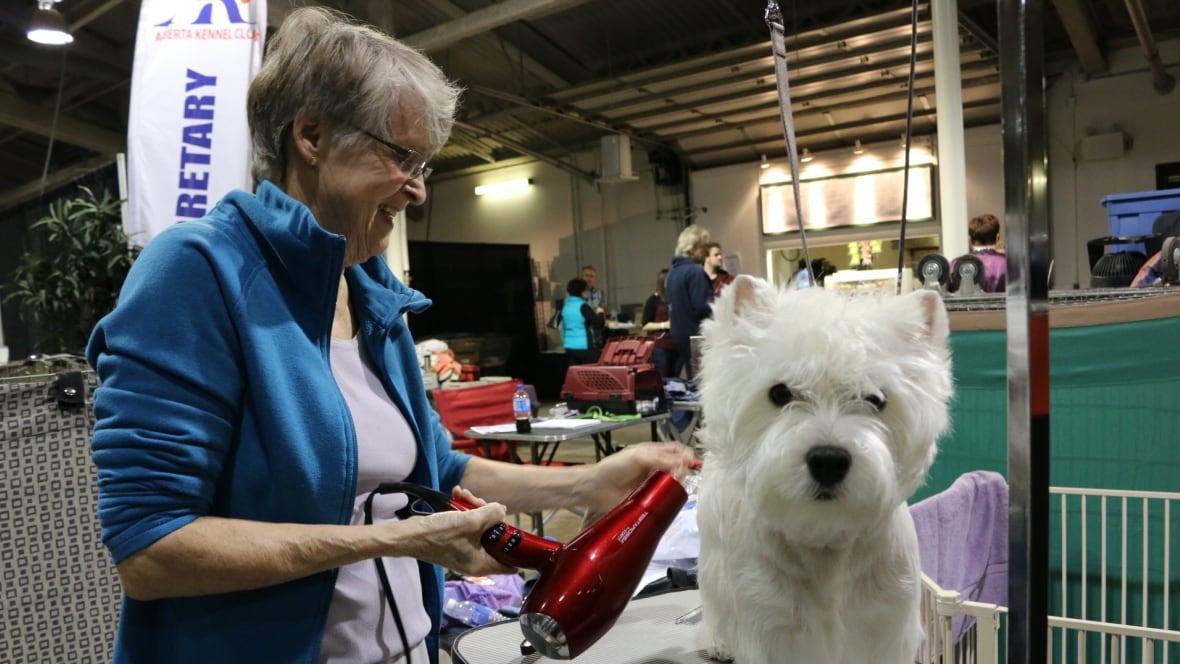 Ottawa Kennel Club Dog Show