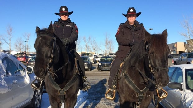Const. Rob MacLeod and Const. Reto Aeschlimann, who spend countless hours with their horses, say they have seen a different side of Calgary. Experts say the feeling is mutual for residents.