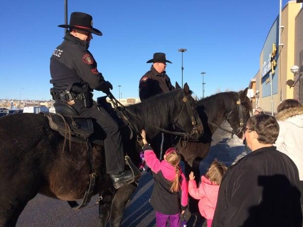 Calgary police horse