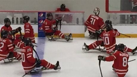 U.S. Tops Canada For Gold At World Sledge Hockey Challenge