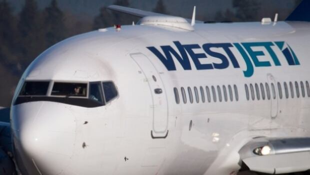 A former WestJet flight attendant is suing the company over sexual assault allegations.