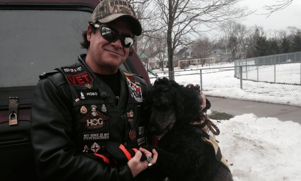 Rescue dog, vet