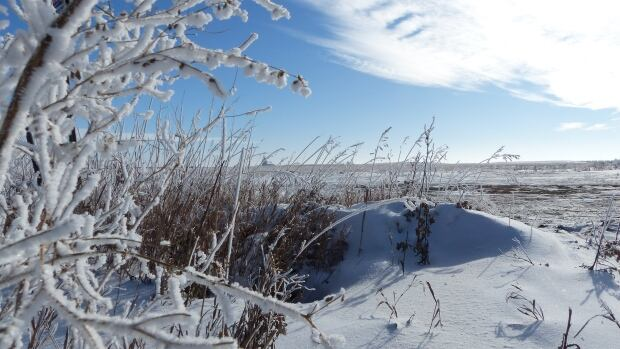 A Saskatchewan politician says a series of sales involving this land in the path of the West Regina Bypass raise troubling questions that require further investigation.