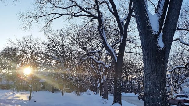 Temperatures are expected to drop throughout Saturday, according to CBC meteorologist John Sauder.