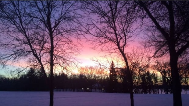 A high of 1 C is expected in Regina on Tuesday, Feb. 9.
