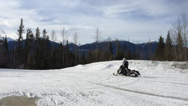 Snowmobilers were back on the mountain trails Saturday near McBride. B.C., a day after five were killed in an avalanche.