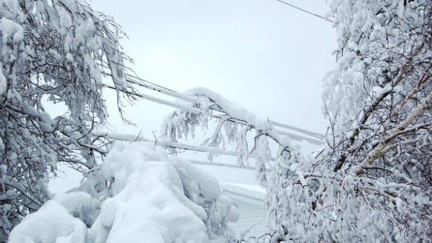 A senior in Cape Breton wants Nova Scotia Power to make restoring power to seniors' homes one of its top priorities. Heavy snow caused tree branches and fall onto power lines on the province's east coast.