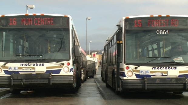 Judy Powell, general manager of Metrobus, says that a route servicing the airport would require new buses fitted with luggage racks.