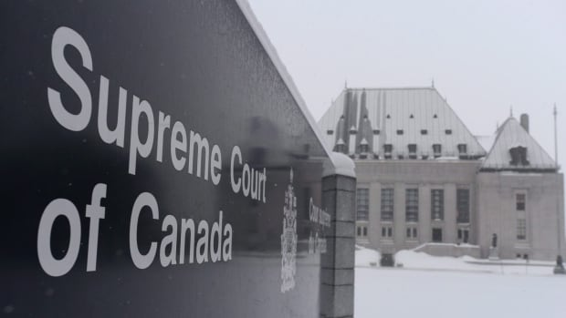 The Gwich'in Tribal Council in Inuvik, N.W.T., is seeking intervenor status in the event the Supreme Court of Canada decides to hear an appeal of the Peel Watershed case.