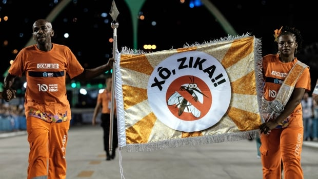 Rio de Janeiro's cleaning workers carry a flag with that reads 'Out Zika' in Portuguese during the second night of the carnival parade at the Sambadrome on Feb. 9.