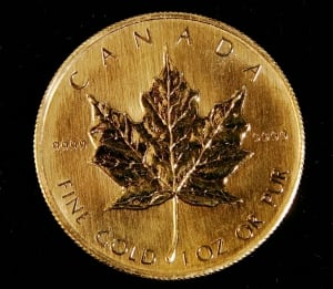 INVESTMENTS GOLD AND RARE COINS TOPIX