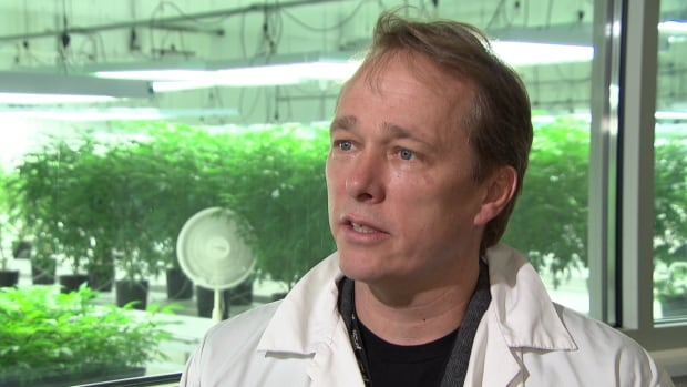 Tweed CEO and founder Bruce Linton says Snoop Dogg will help his firm get ready for marijuana's eventual legalization and regulation in Canada, as promised by the Liberal government.
