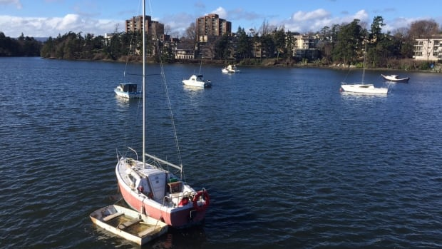 There are now more than 30 vessels anchored in Victoria's Gorge Waterway.