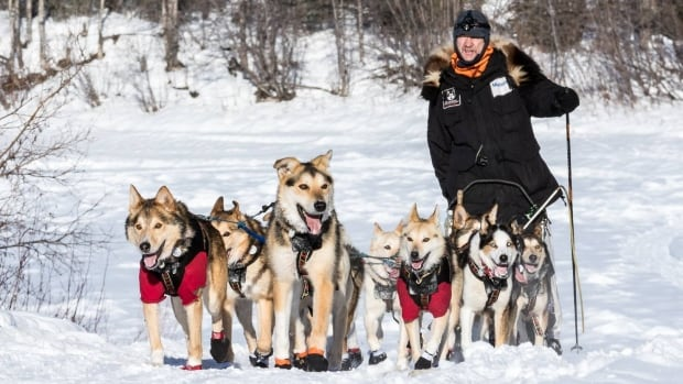 Musher Allen Moore arrives at the Yukon Quest checkpoint in Pelly Crossing, Yukon on Friday.