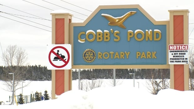 The Town of Gander will receive more than $500,000 from the federal government to upgrade the walking trail at Cobb's Pond.