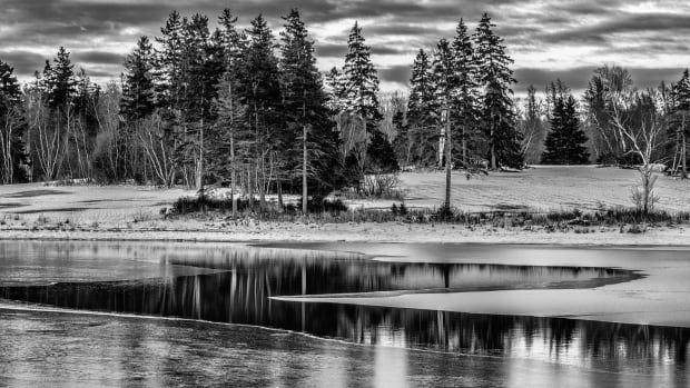 Michael Byrne captured this shot near Sinclairs Island in Pictou County.