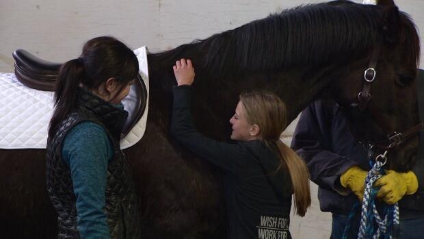 Sydni Grono, 11, hugs her new horse, Java.