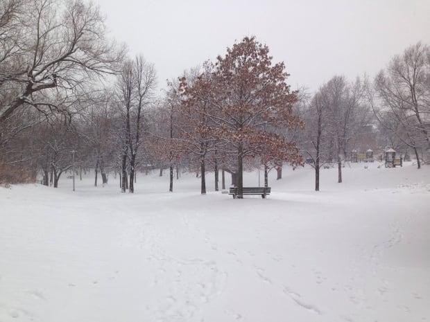Ramsden Park in Snow