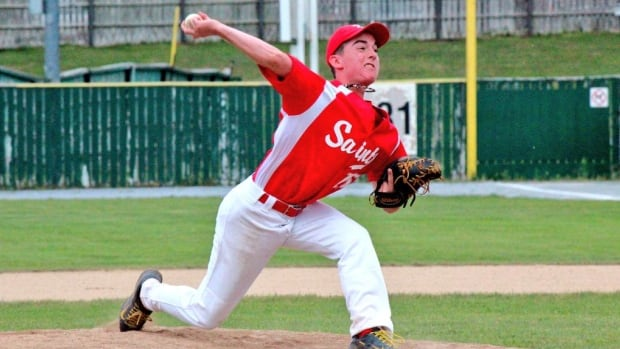 Saint John baseball leagues may have to dig deeper into their budgets to pay for rental fees if the city follows through on proposed fee increases.