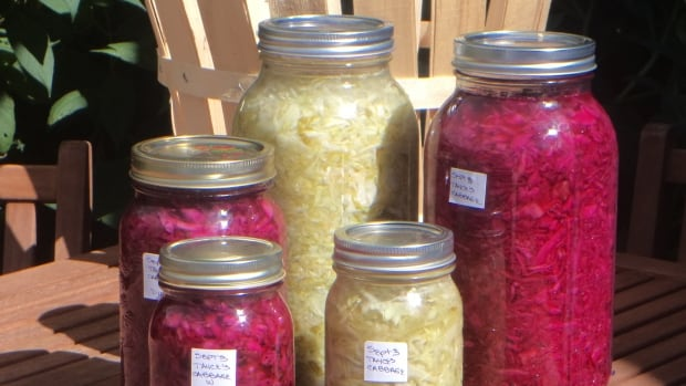 Almost any food can be fermented and preserved.