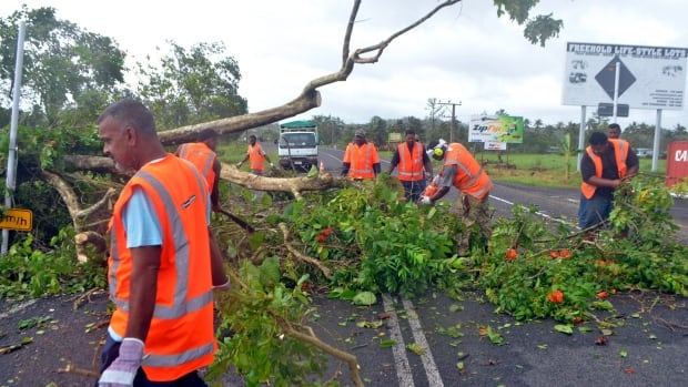 Road workers remove a fallen tree blocking a road near Lami on Sunday.